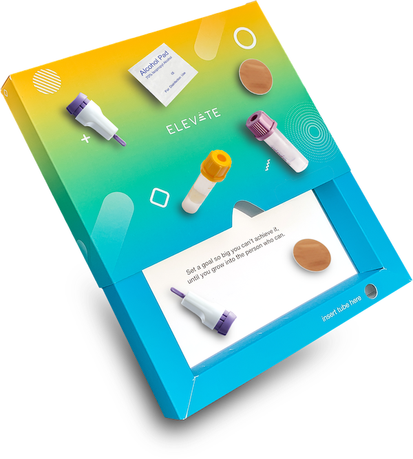elevate-collective-animated-workbook